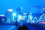 Tokyo-Picnic